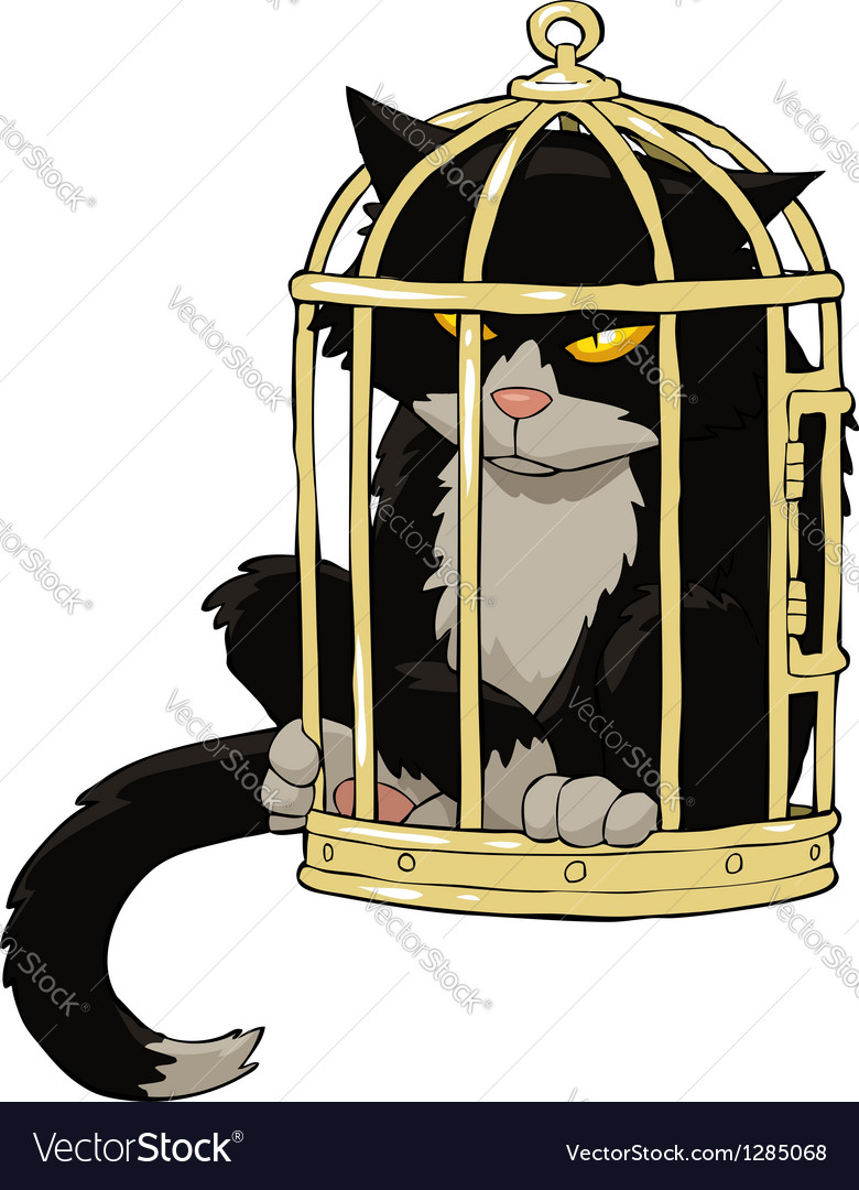 Birdcage with a cat