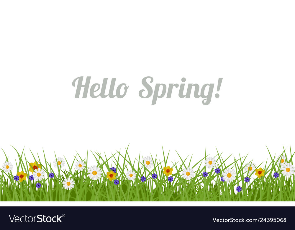 Spring and summer background