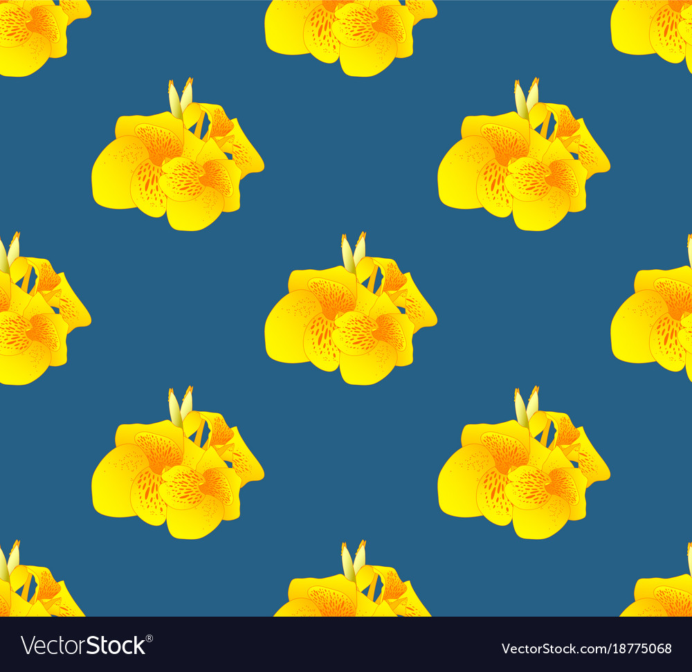 Yellow Canna Lily Flower Seamless On Indigo Blue Vector Image