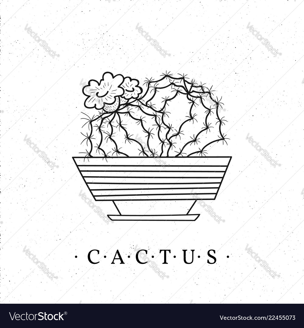 Cactus in a pot hand-drawn cartoon style