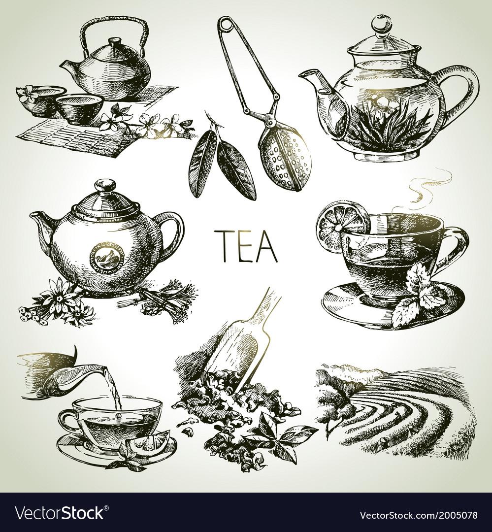 hand drawn sketch tea set royalty free vector image vectorstock