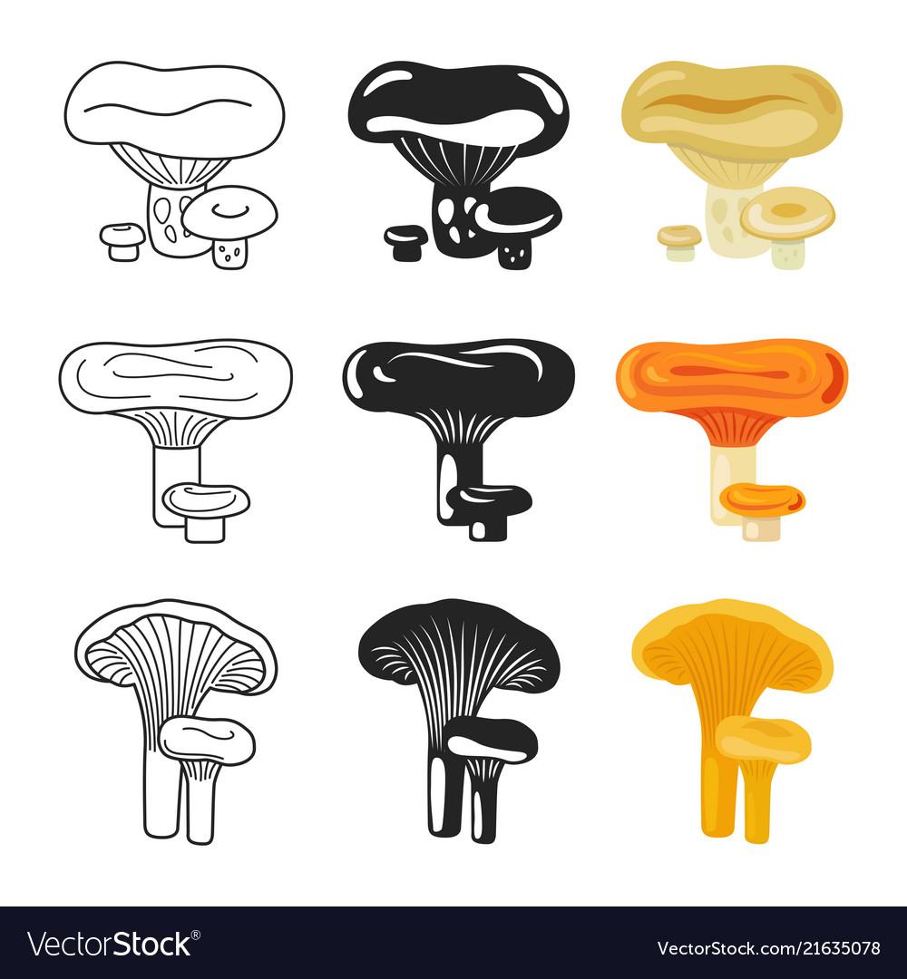 Mushroom icons autumn mushrooms set