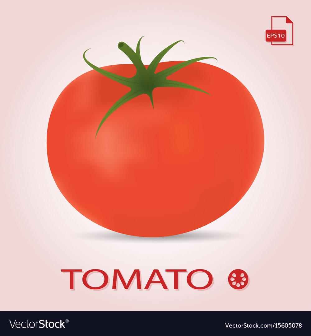 Single fresh ripe tomato isolated on a background
