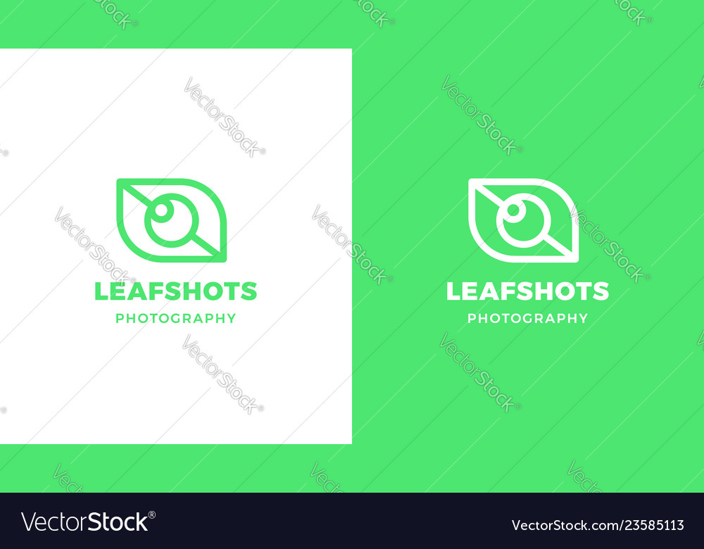 Leaf logotype template positive and negative