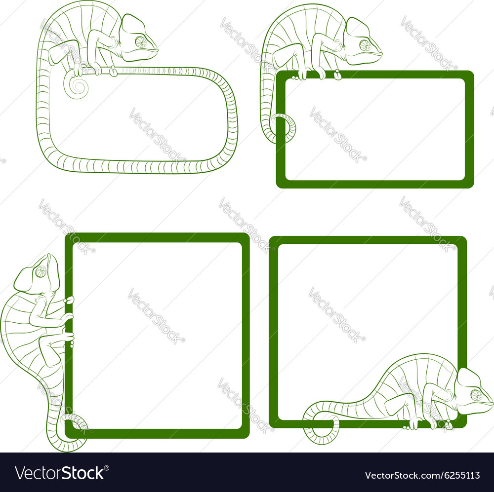Set of icons with green chameleon