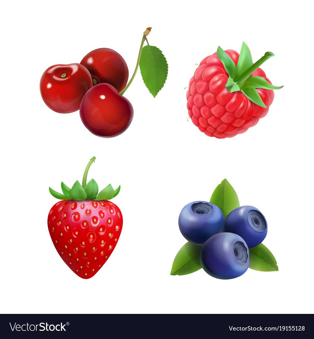 Berries Strawberry Raspberry Blueberries Cherry Vector Image