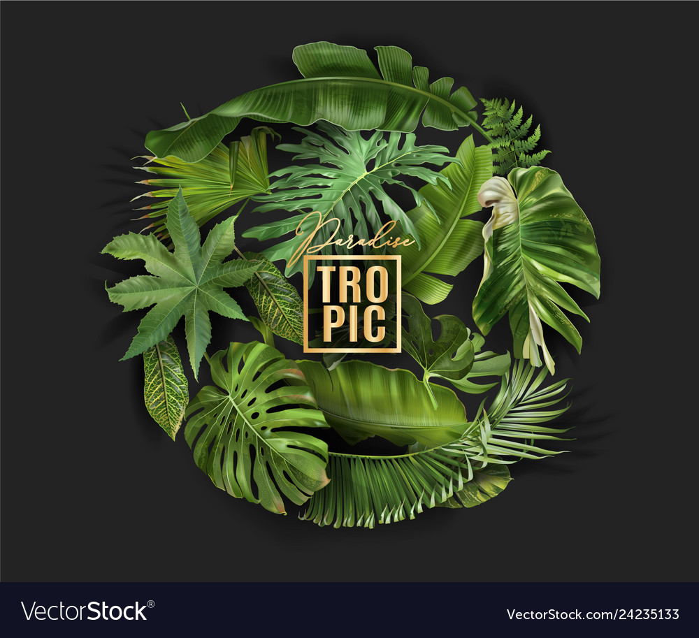Circle banner with green tropical leaves