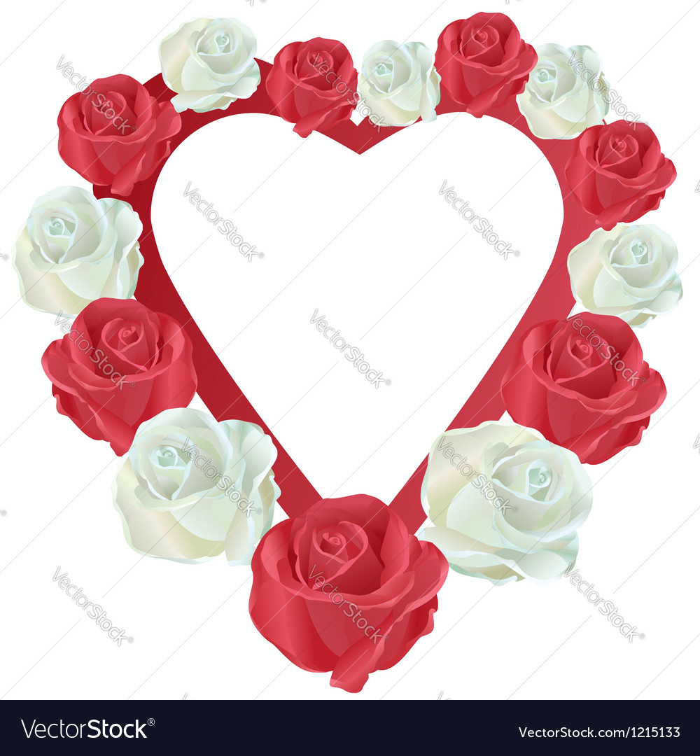 Heart With White And Red Roses Royalty Free Vector Image