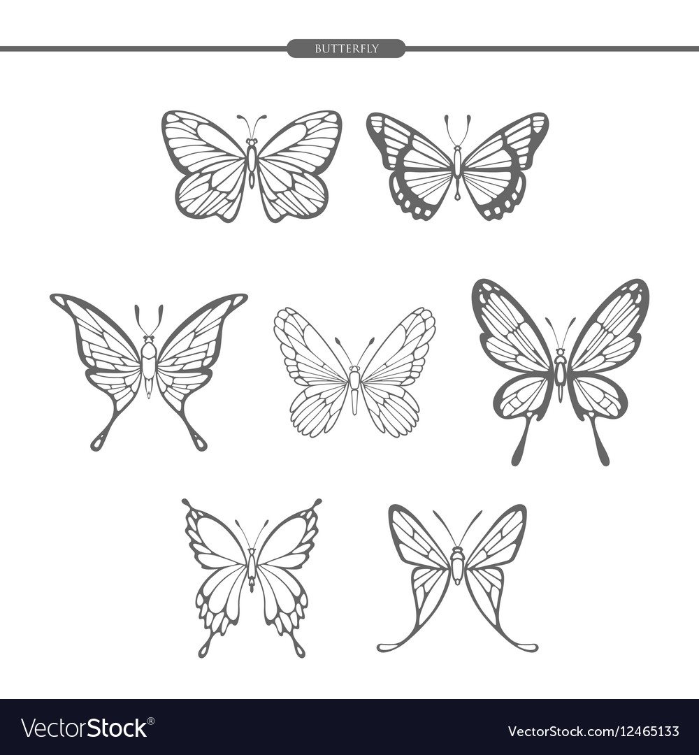 Set black butterflies isolate on white background