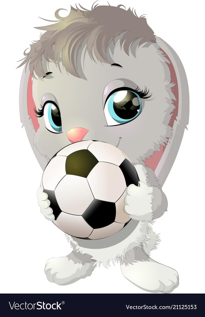 Beautiful cute rabbit