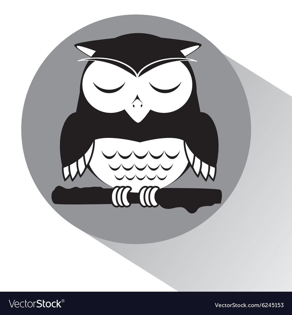 Owl sleeping vector image