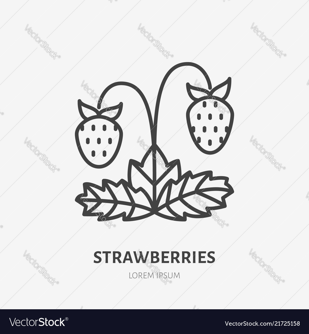 Strawberries flat line icon forest berry sign
