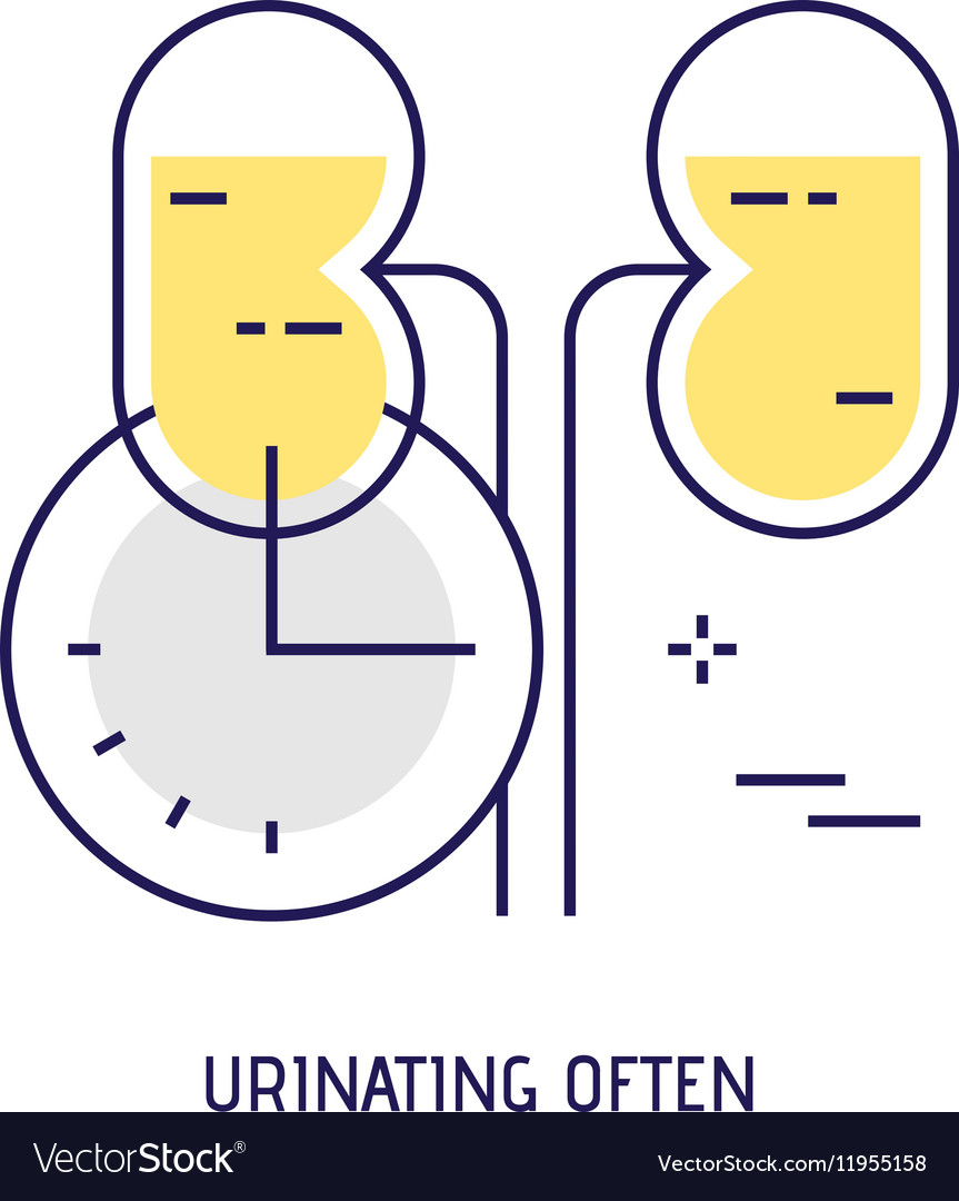 Urinating often Modern thin line icon