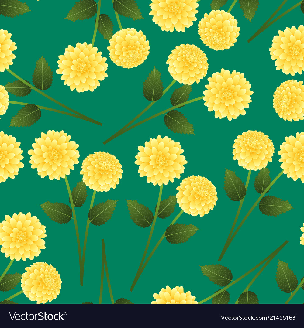 Yellow dahlia on green background royalty free vector image yellow dahlia on green background vector image izmirmasajfo