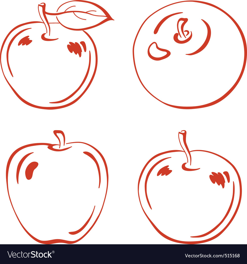 Fruits outline apples vector image