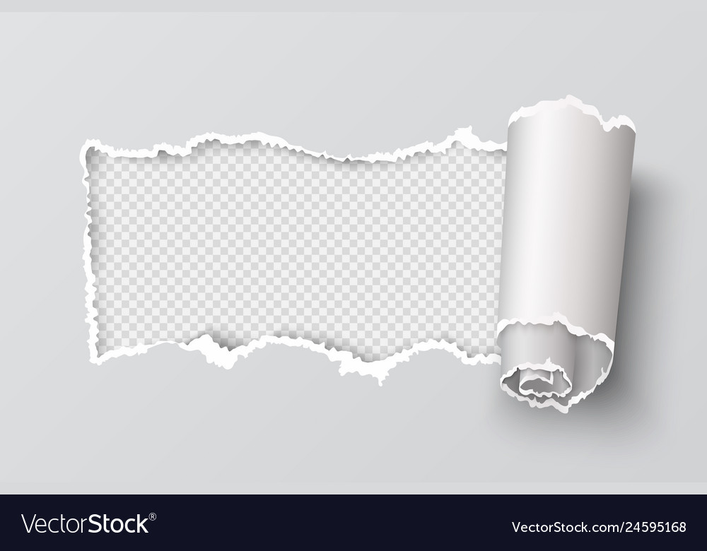 Torn paper edge realistic transparent header hole
