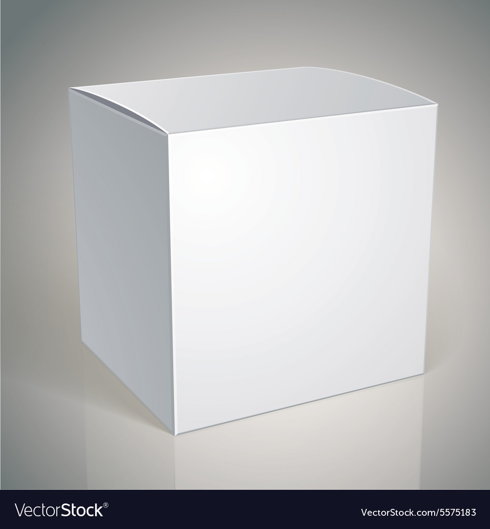 Cdn4 Vectorstock Com I 1000x1000 51 83 Blank Box T Rh Pizza Template Wheaties
