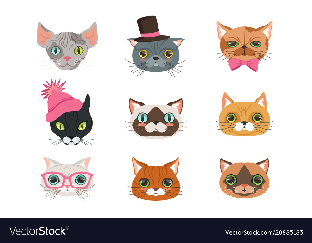 Set of funny cats heads of different breeds
