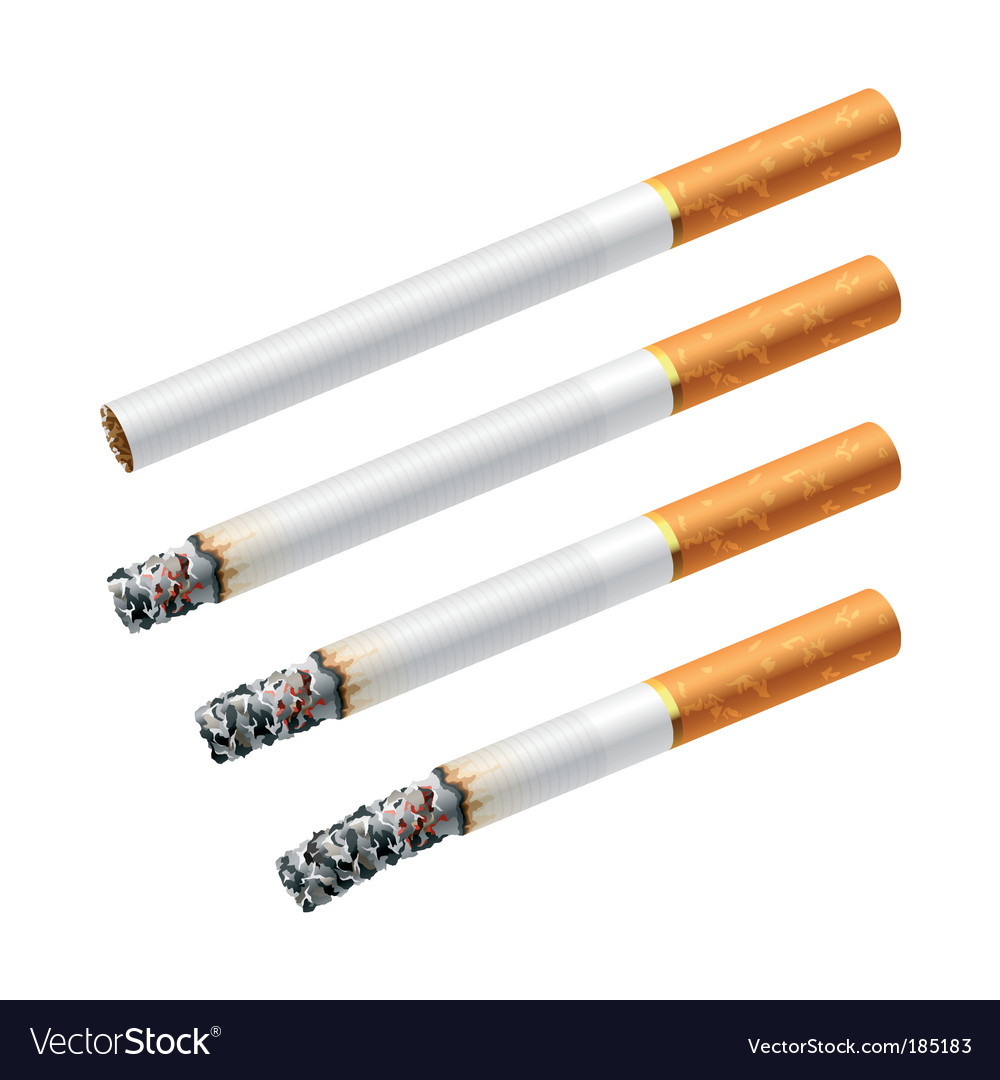 Smoking a cigarette vector image