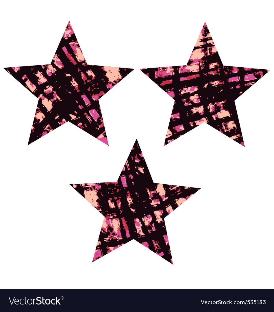 Star textured symbol vector image