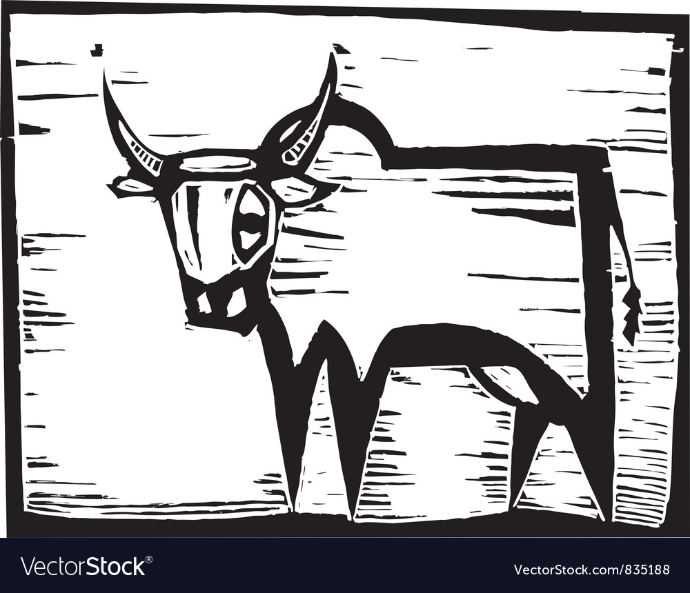 African Cow vector image