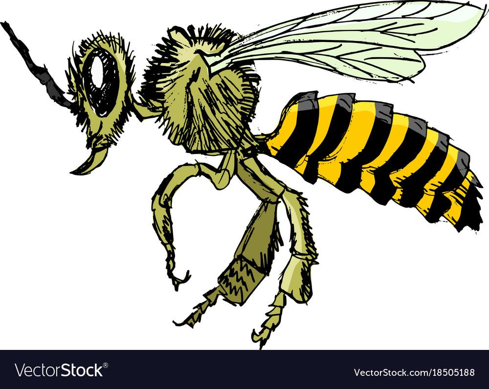 Sketch of bee