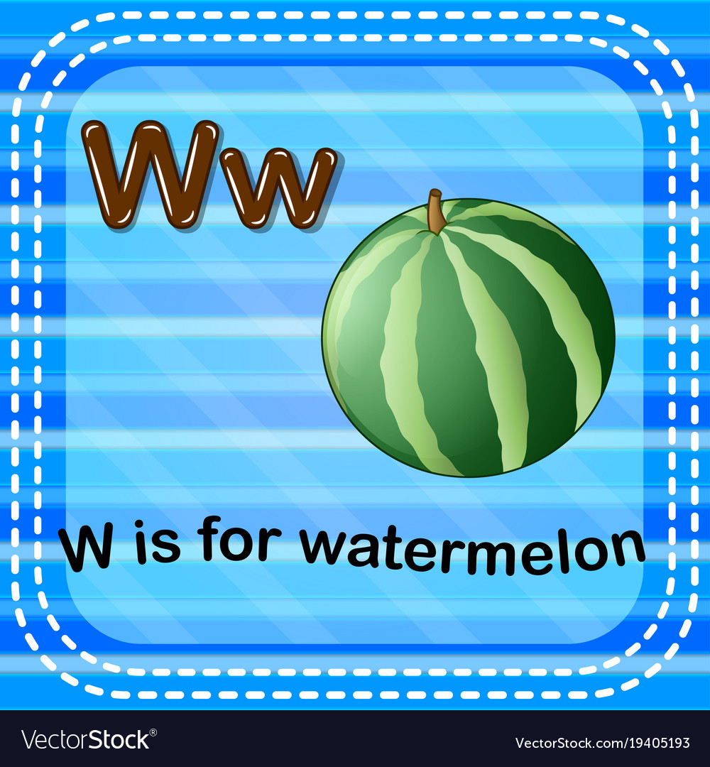Flashcard letter w is for watermelon vector image