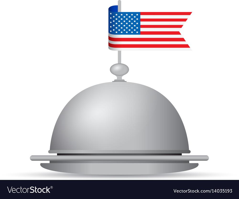 Usa flag dinner platter vector image