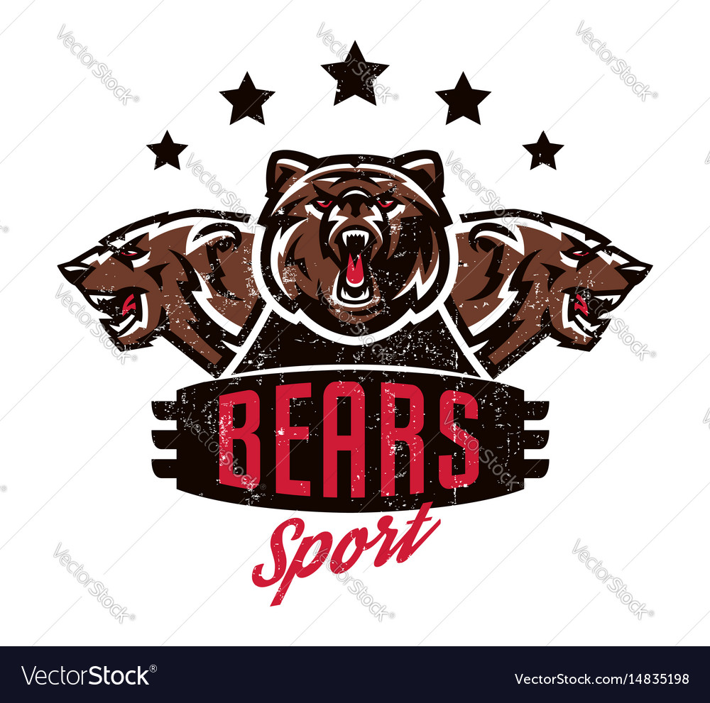 Design For Printing On T Shirts Aggressive Bear Vector Image