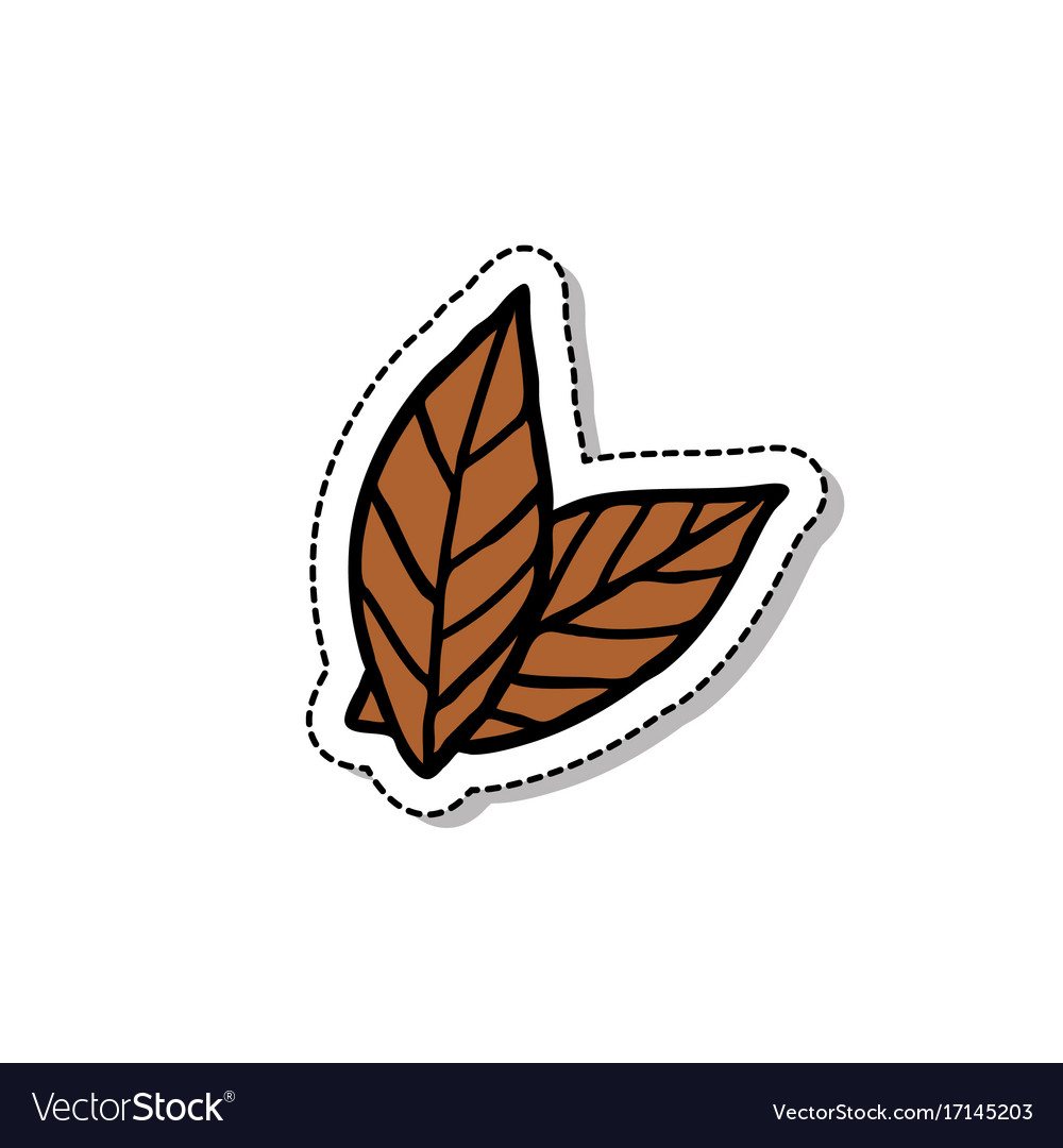 Tobacco leaves doodle icon