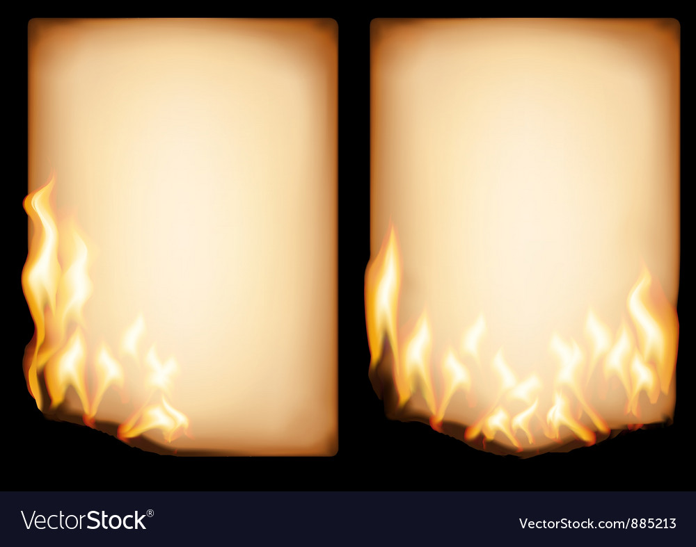 Old paper in fire vector image