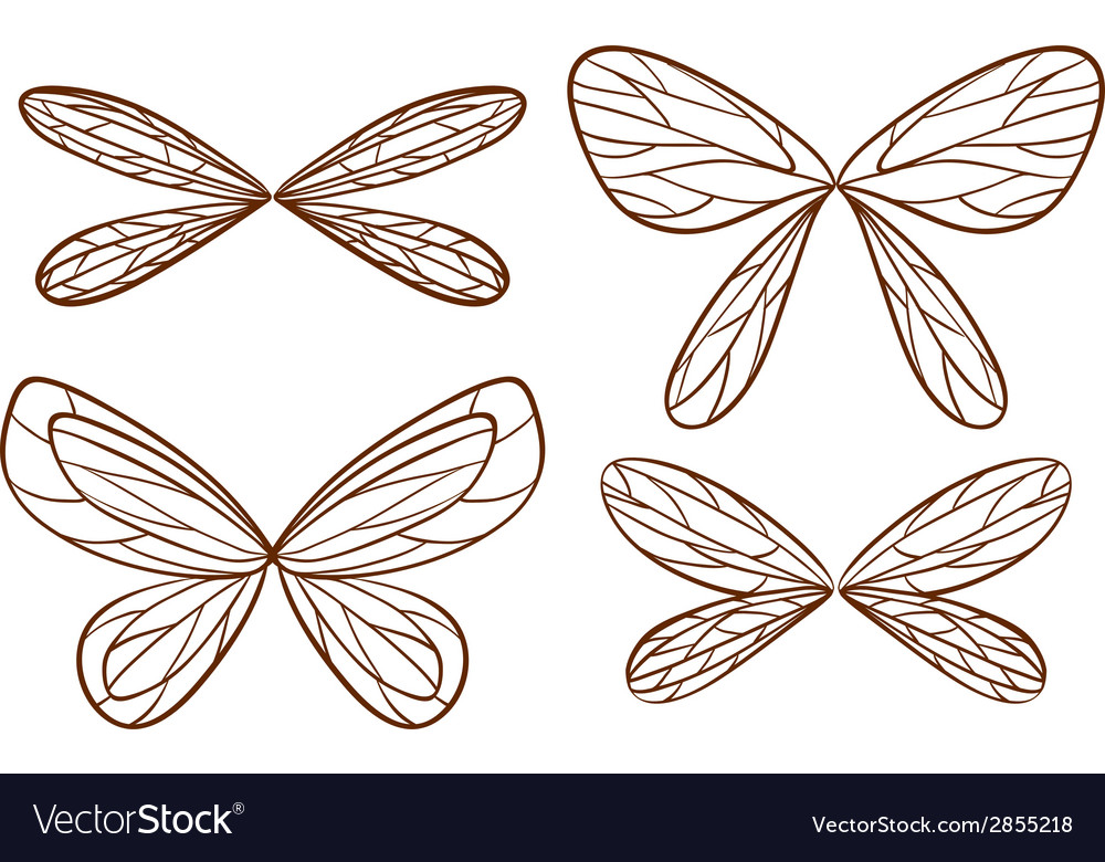 Simple sketches of fairy wings vector image