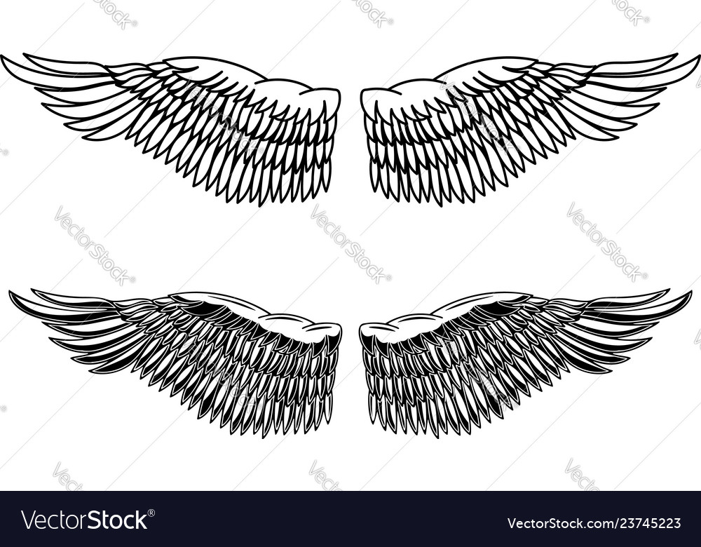 vintage style eagle wings design element vector image vectorstock