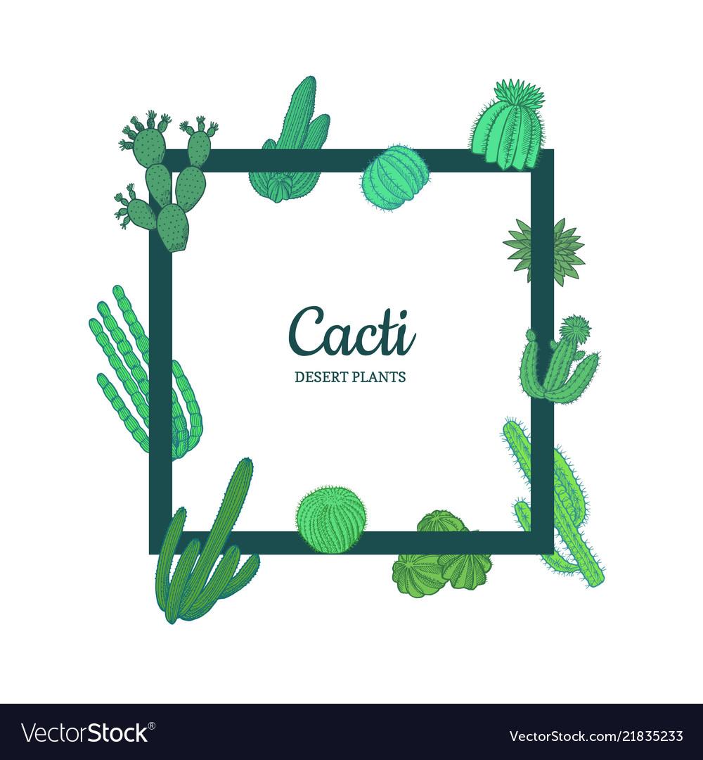 Hand drawn desert cacti plants frame banner