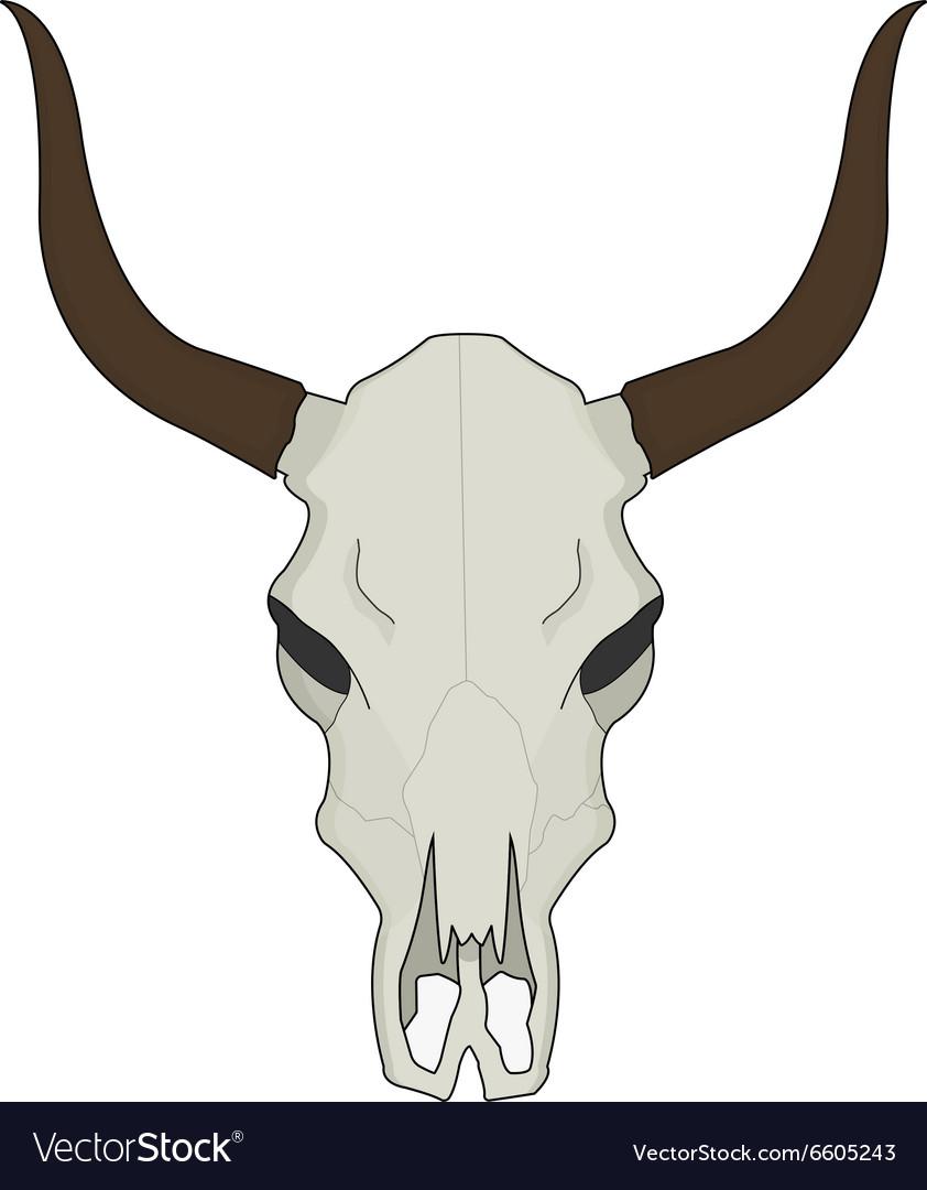 Cow Skull Color Royalty Free Vector Image Vectorstock