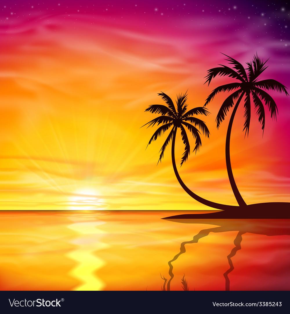 Sunset Sunrise with Palm Trees