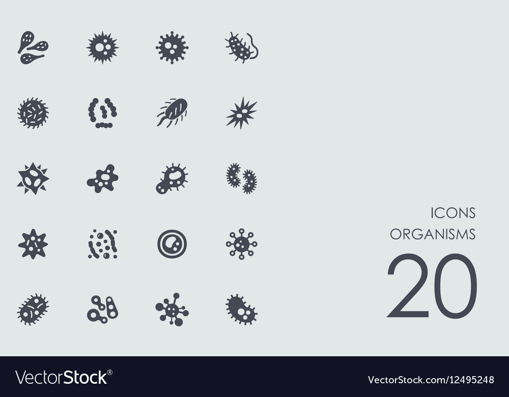 Set of organisms icons vector image