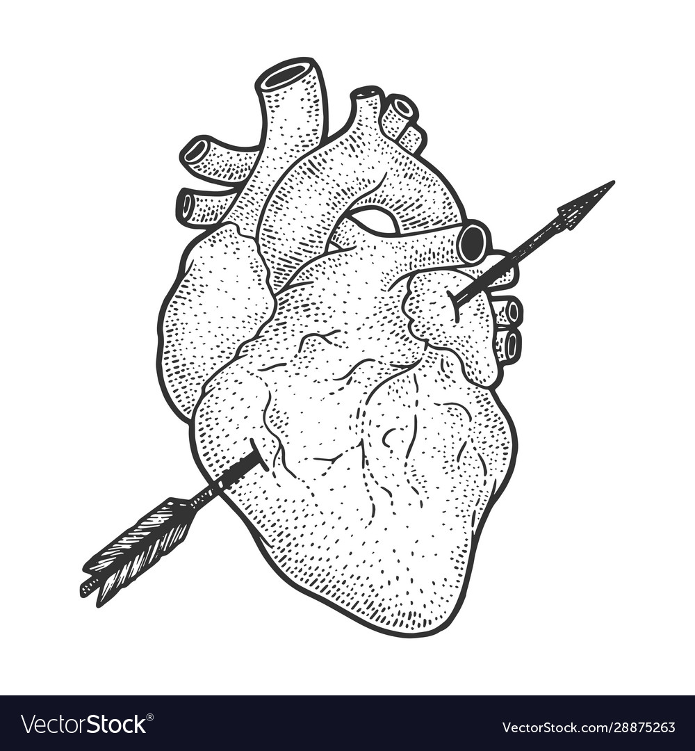 Heart pierced with arrow sketch engraving