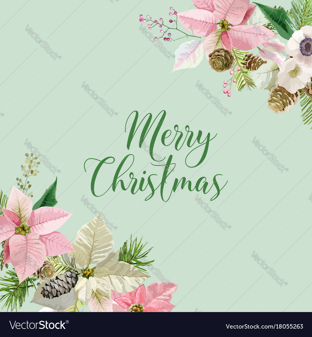 Winter Christmas Flowers Greeting Card Royalty Free Vector