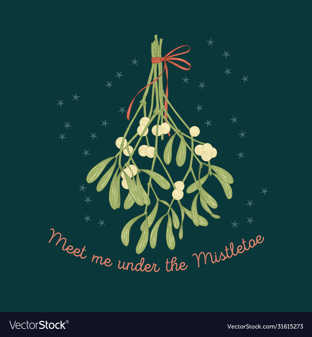 Mistletoe greeting card on dark background