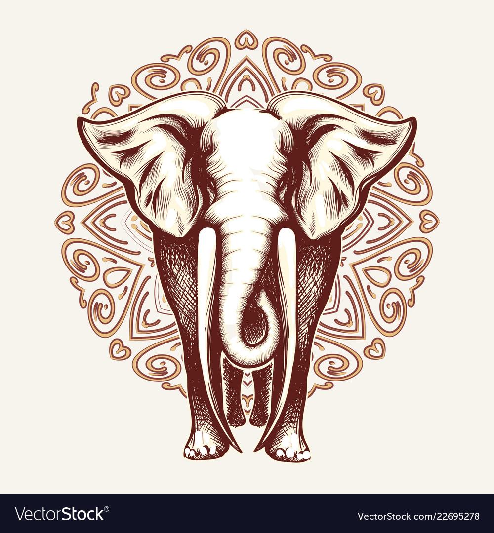 Elephant on mandala background