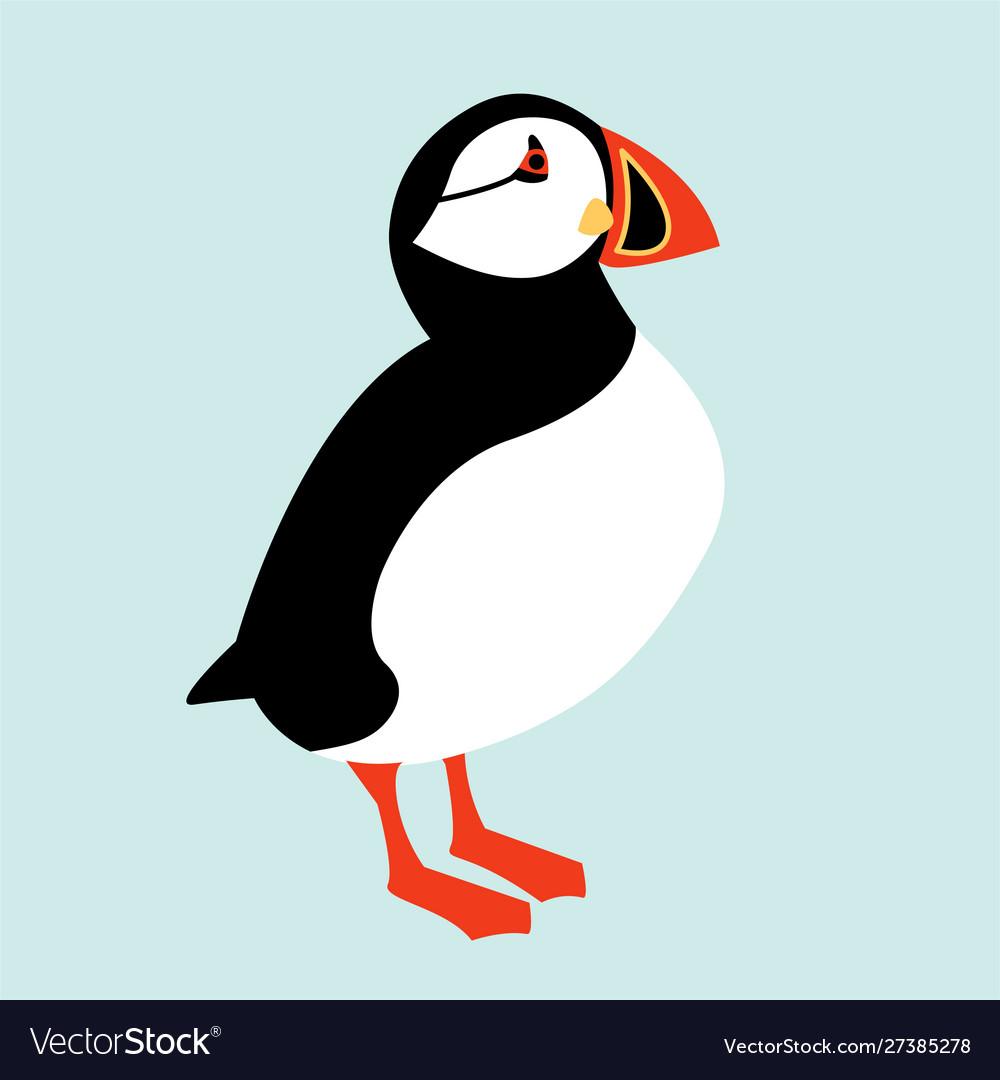 Icelandic puffin bird icon