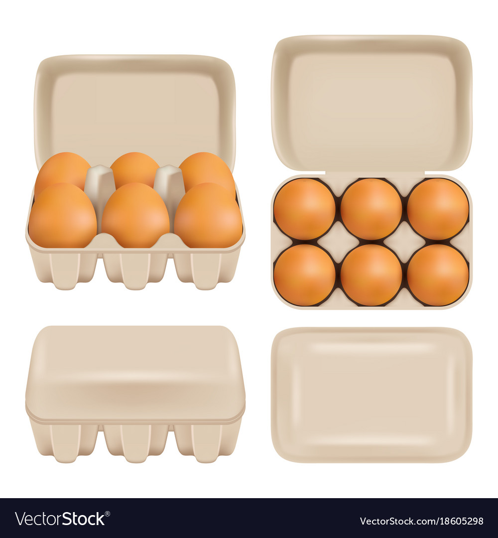 Egg Carton Consumer Pack Set Royalty Free Vector Image