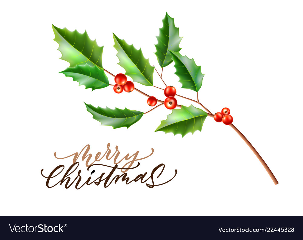 Realistic merry christmas holly leaves fir