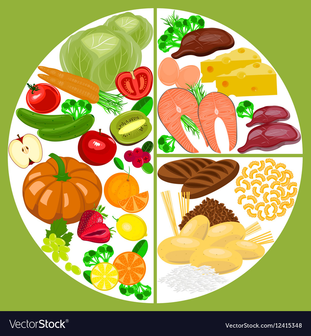 Healthy Eating Food Plate Nutrition Balance Vector Image