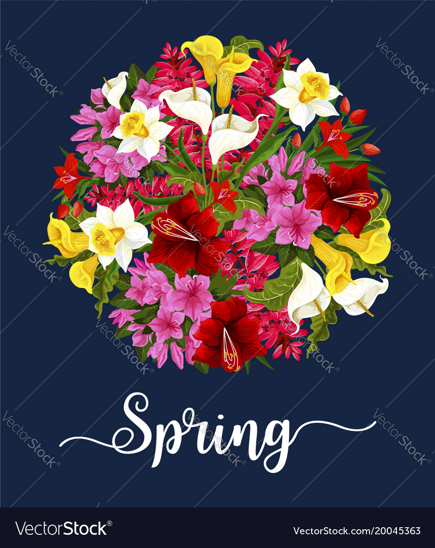 Spring Flower Greeting Card With Floral Bouquet Vector Image