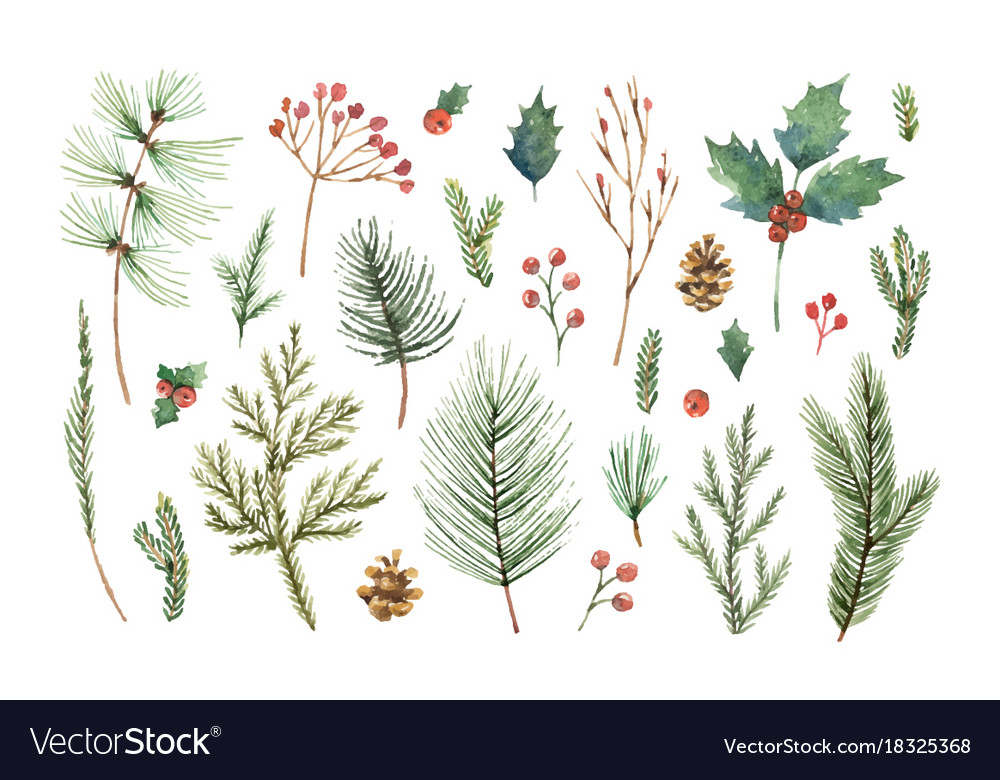 Watercolor christmas set with evergreen