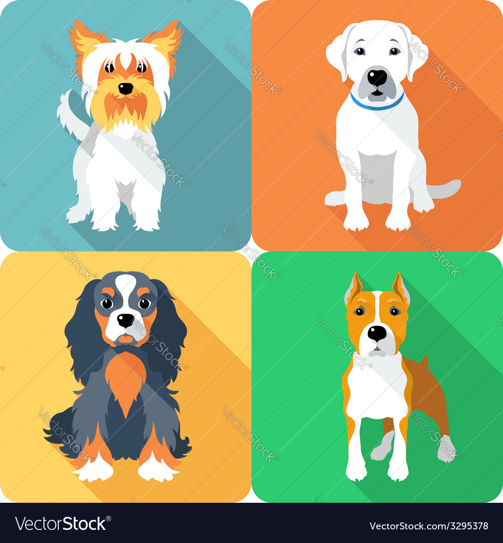 Set icon flat design dogs different breed