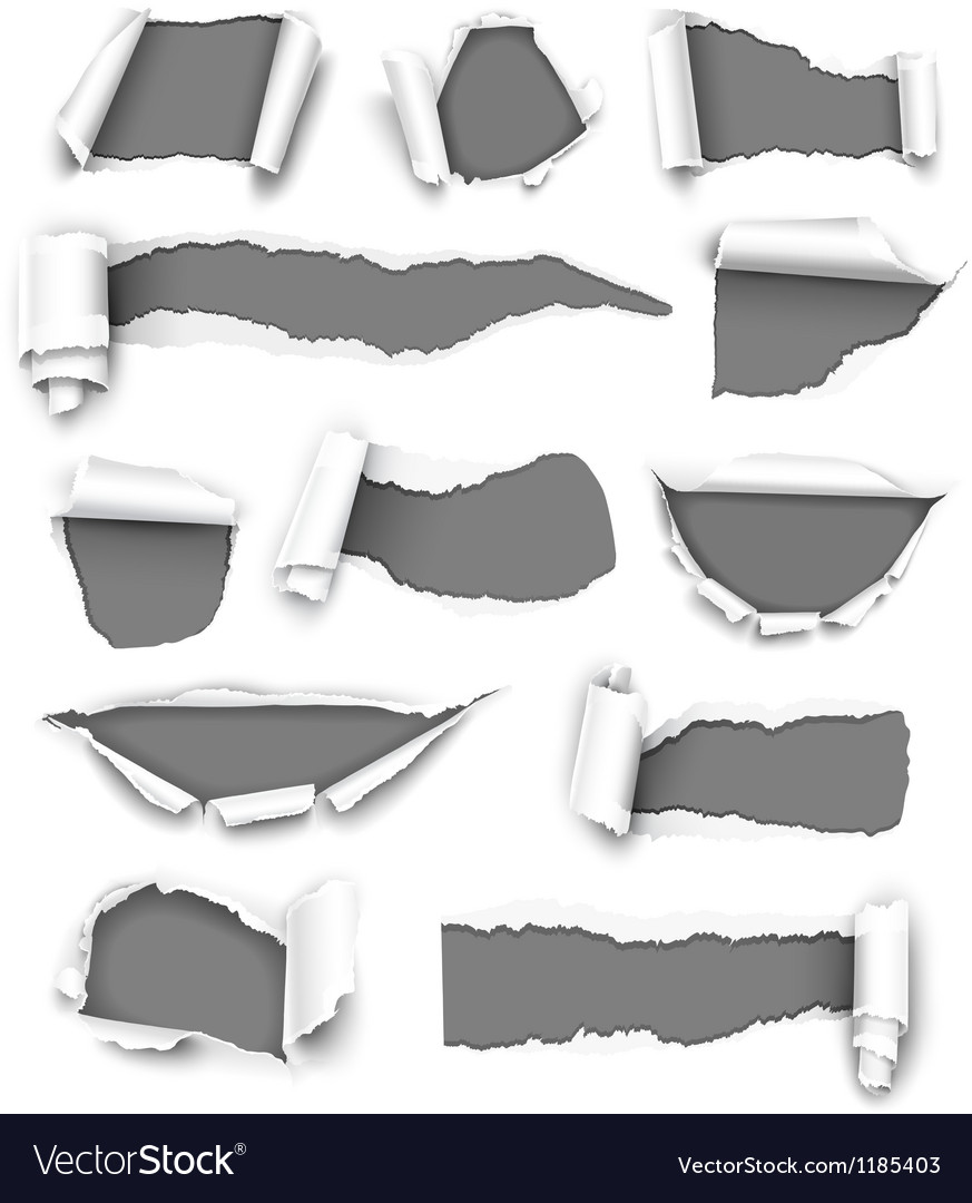 Torn gray paper vector image