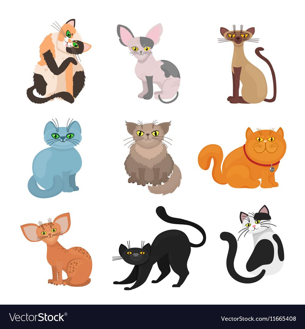 Cartoon domestic cats